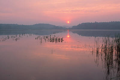 Impressionist Sunrise Great Meadows Concord Ma Poster by Bucko Productions Photography