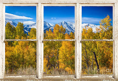 Independence Pass Autumn White Peeling Window View Poster by James BO  Insogna