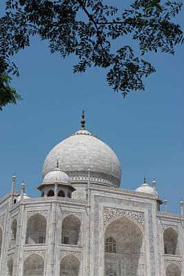 India, Agra, Taj Mahal Poster by Cindy Miller Hopkins