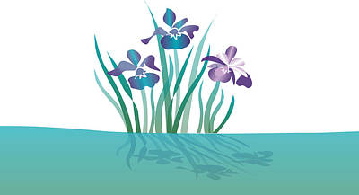 Indigo Iris Poster by Julia and David Bowman