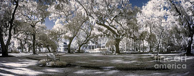 Infrared Park Landscape Poster by John Wollwerth