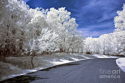 Infrared Road Poster