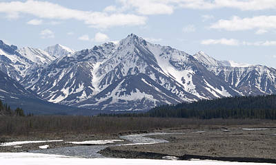 Inside Denali National Park 4 Poster