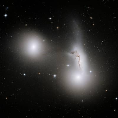 Interacting Galaxies In Hcg 90 Poster by Nasa/esa/stsci/r. Sharples, University Of Durham
