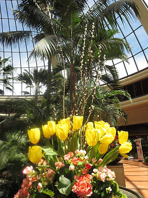 Poster featuring the photograph Interior Decorations Butterfly Gardens Vegas Golden Yellow Tulip Flowers by Navin Joshi