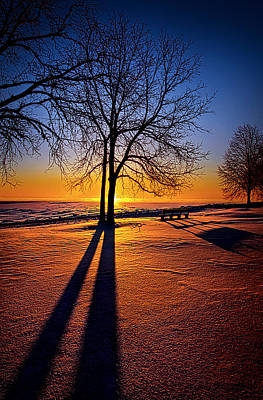 Into The Shadows Of Light Poster by Phil Koch