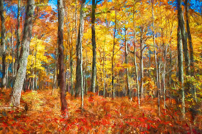 Into The Woods Fall Autumn Colors Painted Poster