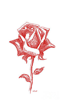iPhone-Case-Flower-Rose2 Poster by Gordon Punt