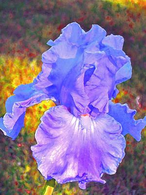 Iris 4 Poster