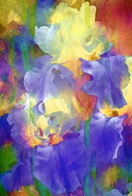 Iris 66 Poster by Pamela Cooper