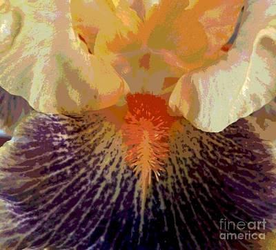 Iris Beard Poster by Sally Simon