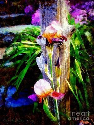 Iris Bloom Poster