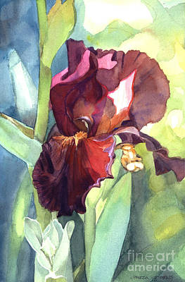 Watercolor Of A Tall Bearded Iris Called Sultan's Palace In Red And Burgundy Poster