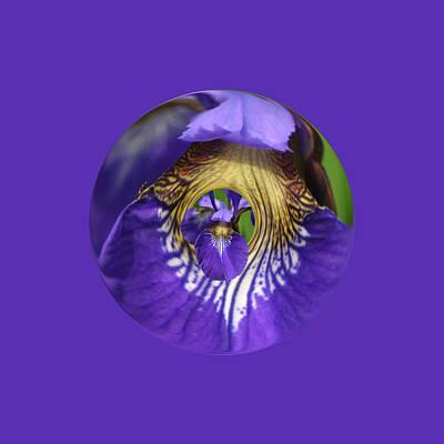 Iris Leaf Loop Poster