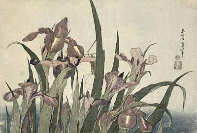 Irises And Grasshopper Poster by Katsushika Hokusai