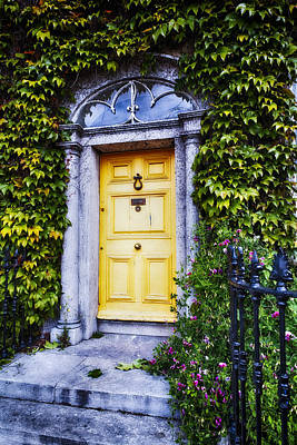 Irish Door With Ivy Poster by George Oze