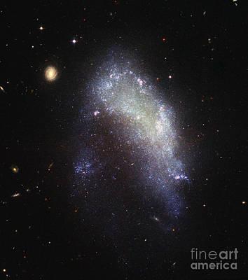 Irregular Galaxy Ngc 1427 Poster