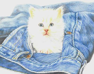 Is That A Kitten In Your Pocket? Poster by Monica Margarida