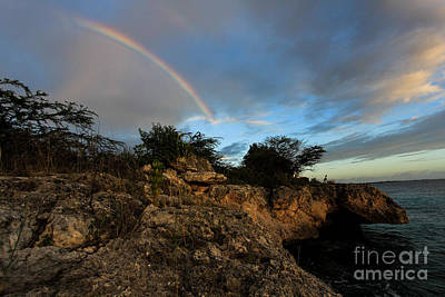Island Rainbow Poster by Jennifer Ansier