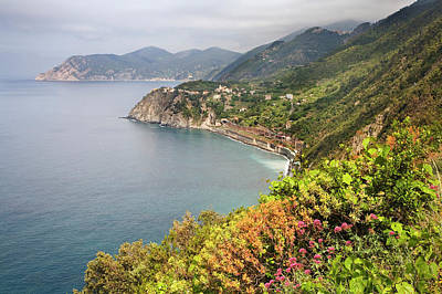 Italy Coastal Hiking Area Poster by Jaynes Gallery