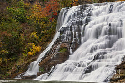 Ithaca Falls In Autumn Poster by Michele Steffey