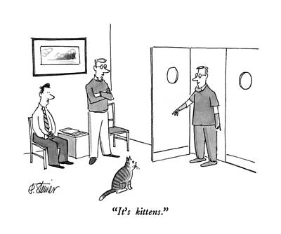 It's Kittens Poster