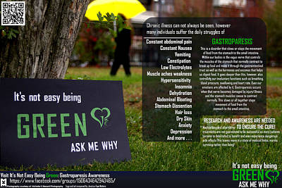 It's Not Easy Being Green Poster Poster