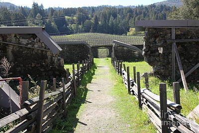 Jack London Ranch Winery Ruins 5d22180 Poster