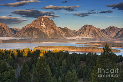 Jackson Lake Morning Poster by Mark Kiver