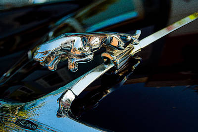 Jaguar Jaguar Poster