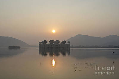 Jal Mahal In Sunrise Poster