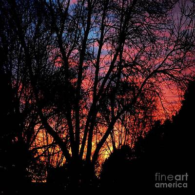 Poster featuring the photograph January Dawn by Luther Fine Art