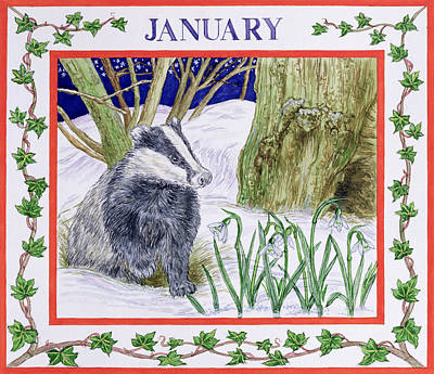 January Wc On Paper Poster by Catherine Bradbury