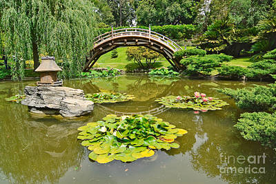 Japanese Garden With Moon Bridge And Lotus Pond With Koi Fish. Poster