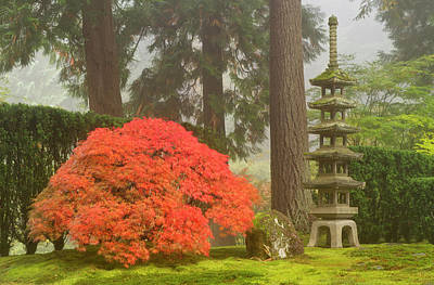 Japanese Maple And Stone Pagoda Lantern Poster by William Sutton