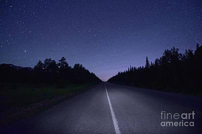 Jasper Starry Night Poster by Dan Jurak