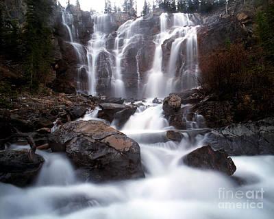 Jasper - Tangle Falls Poster by Terry Elniski