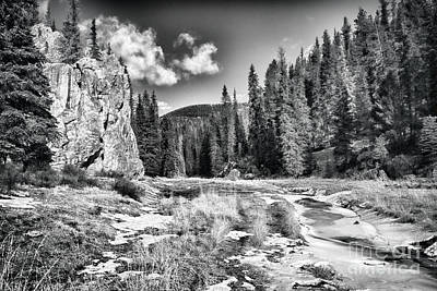 Jemez Mountain Spring-black And White Poster by Douglas Barnard
