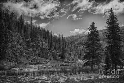 Jemez Mountain Spring-black And White V2 Poster by Douglas Barnard