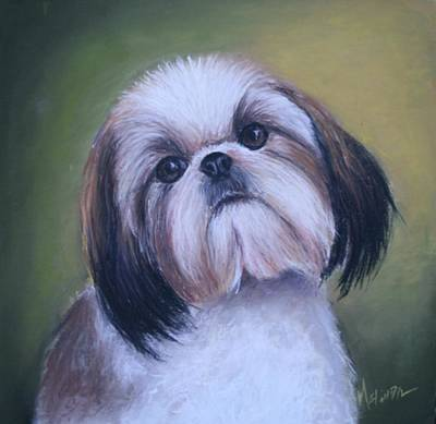 Poster featuring the painting Jenny Wren Shih Tzu Puppy by Melinda Saminski