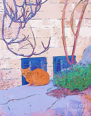 Jerusalem Alley Cat Poster by Rick Black