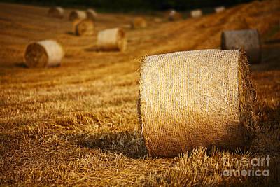 Joe Fox Fine Art - Hay Bales Rolled In A Field At Harvest Time Poster by Joe Fox