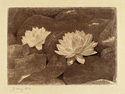 John Henry Hill, Waterlilies, American, 1839 - 1922 Poster