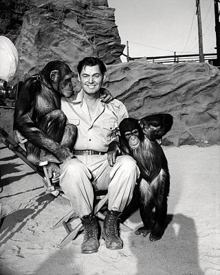 Johnny Weissmuller In Jungle Jim  Poster