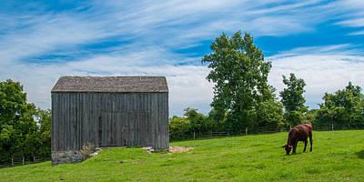 Jones Farm 17811c Poster