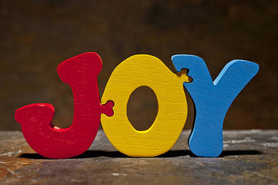 Joy Puzzle Painted Wood Letters Poster by Donald  Erickson