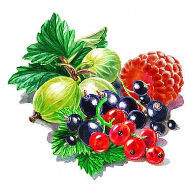 Juicy Berry Mix  Poster by Irina Sztukowski