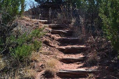 Juniper Ridge Steps Poster