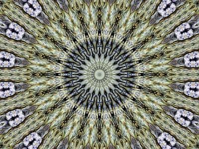 Kaleidoscope 6 Poster by Tom Druin