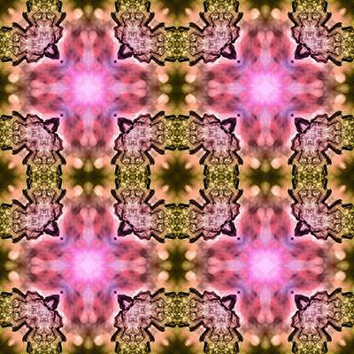 Kaleidoscope Leaf Poster